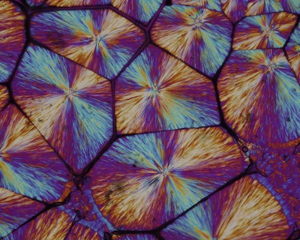 6 polypropene plastic macro shot