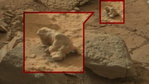 Is this a lizard on Mars?