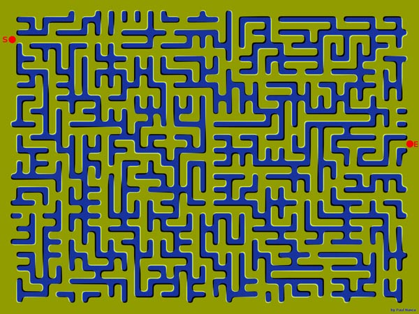 The Maze Illusion