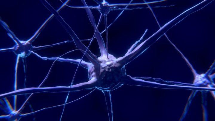 The Brain Recalls Memories in an Unusual Way