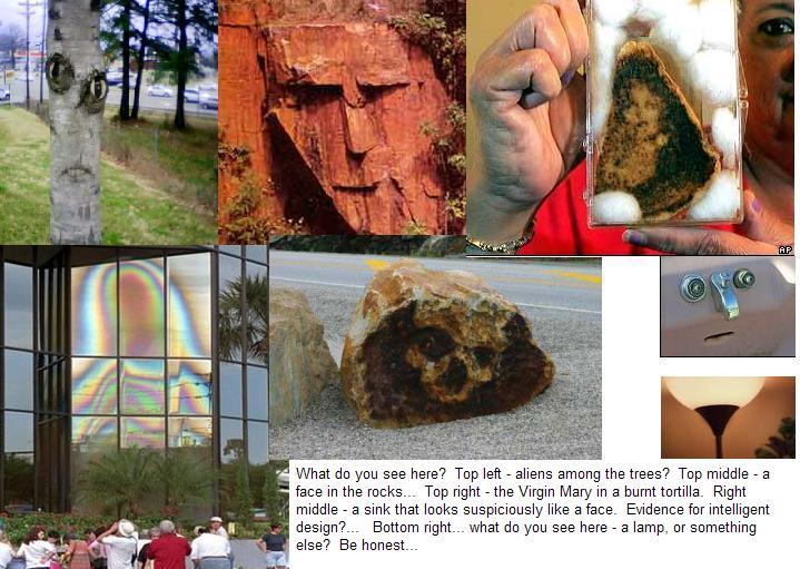 Collage of Pareidolia Examples