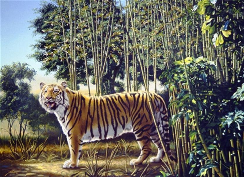 The Hidden Tiger Puzzle