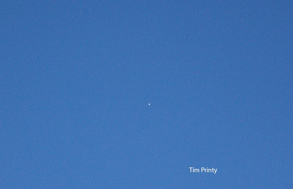 Venus, seen in the day.