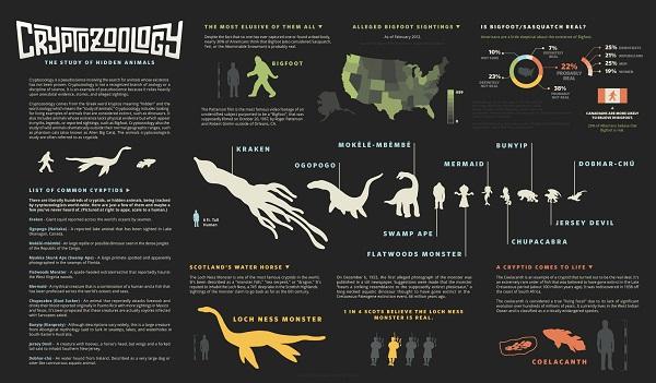 What is crytozoology?