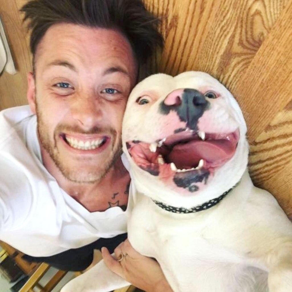 Dan posts a photo of his new dog