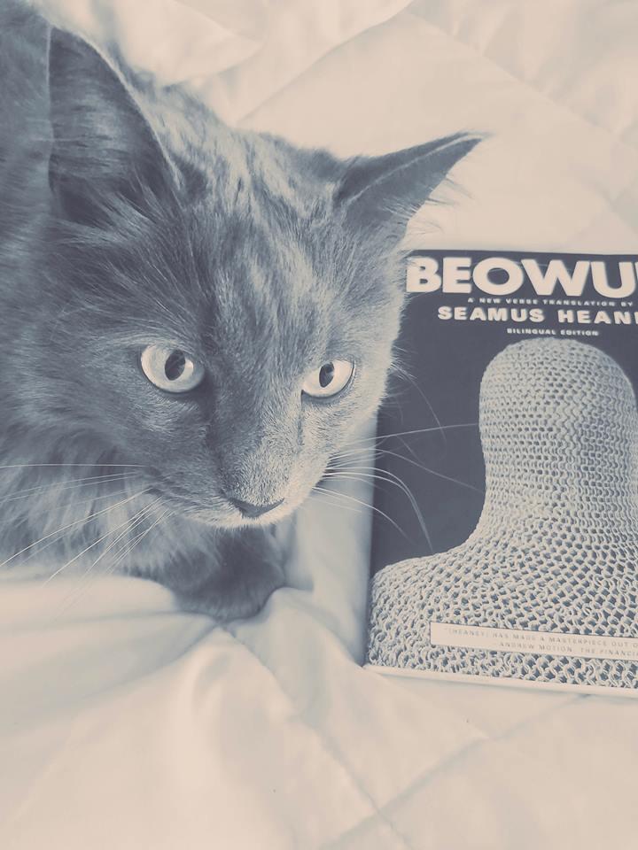 photogenic Rex Manning the cat