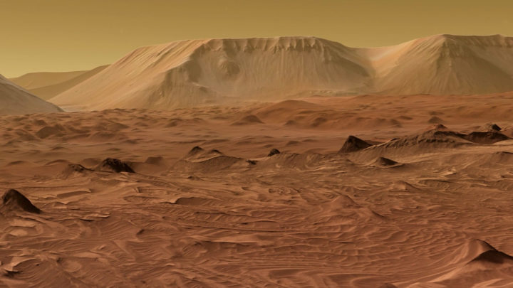 Scientist Claims To Have Discovered Proof Of Insects On Mars