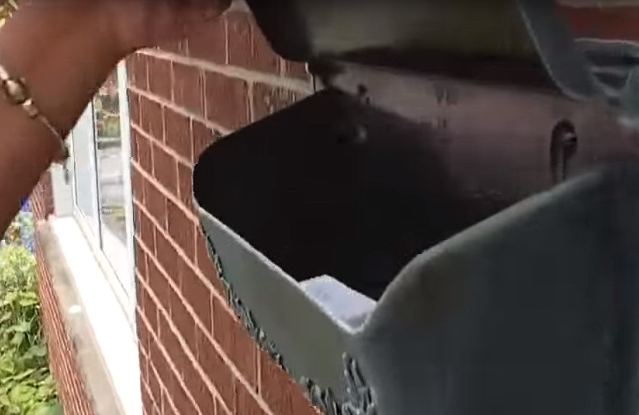 Mailman Returns To Boy's Stand But Not For A Drink